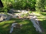 Rocks Behind Our Home Just Above Our Garden. Cleaned Off The Rocks This Spring